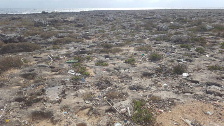 GIORNATA ECOLOGICA Per la pulizia dei rifiuti abbandonati in località SERRA CICORA Giovedì 25 aprile – NARDO' Dalle ore 9.30 alle 12.30