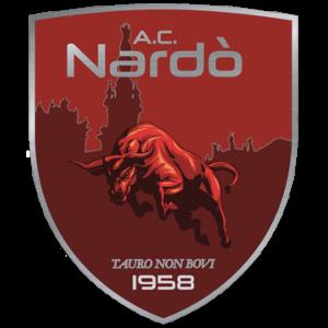 Pazzo campionato… come avevamo temuto alla vigilia il Nardo' stecca contro la Puteolana fanalino di coda della classifica e perde per 2-1
